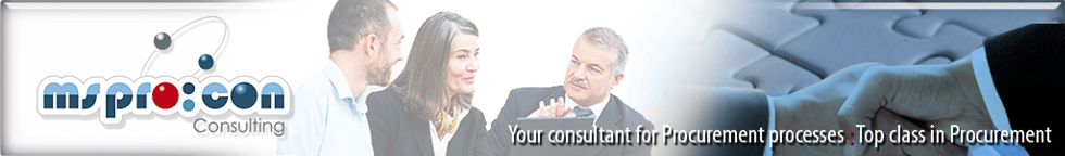Banner ms-procon Consulting